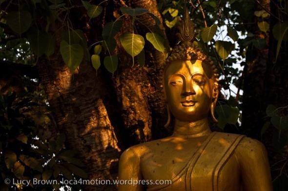 Wat That Luang Neua, Vientiane, Laos