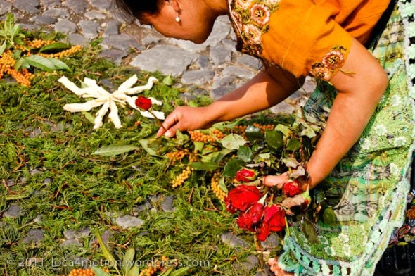 A simple alfombra of leaves and flowers, Antigua, Guatemala