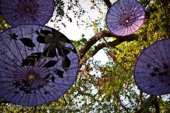 Traditional Thai umbrellas or parasols, outdoor exhibition, Chiang Mai, Thailand