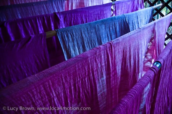 Dyed Thai silk fabric drying, Chiang Mai, Thailand