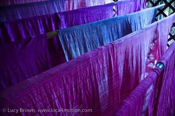 Dyed Thai silk fabric drying, Chiang Mai, Thailand