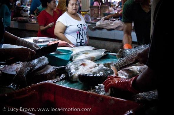 Fish counter, morning market, Krabi town, Krabi, Thailand