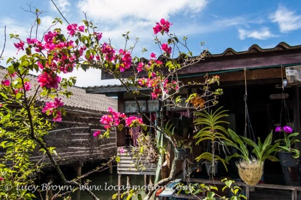 Potted flowering orchids and bougainvillea adorn floating houses, Koh Panyee (Ko Panyi), Phang Nga Bay, Thailand