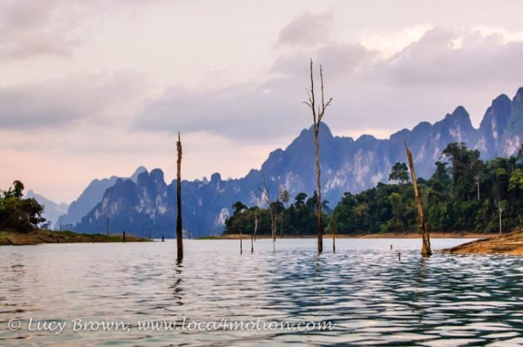 Skeleton trees in water at dusk, Cheow Lan Lake, Khao Sok National Park, southern Thailand